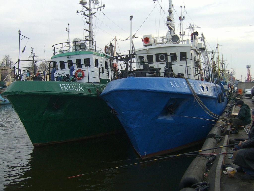 fishhungry купить в калининграде